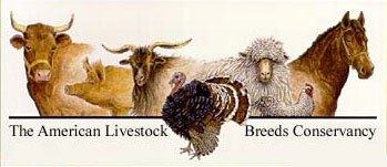 American Livestock Breed Conservancy (ALBC) (Click Image to Visit their Site)